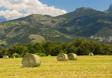 Landscape in Haute Provence Royalty Free Stock Photo