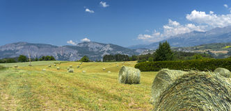 Landscape in Haute Provence Stock Photos