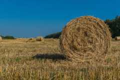 Landscape with hay bail harvesting Royalty Free Stock Photography