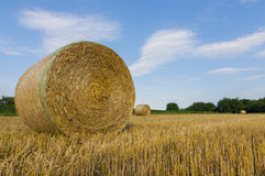 Landscape and hay bale Stock Images