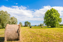 Landscape,Hay bale Royalty Free Stock Images