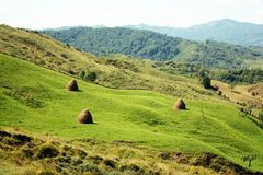 Landscape with hay bales Royalty Free Stock Photos
