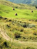 Landscape with hay bales Stock Photo