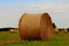 landscape of hay bales Royalty Free Stock Images