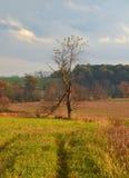 Landscape 16 Stock Photo