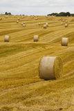 Landscape with hay roll Stock Images