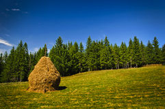 Landscape with hay stack stock image