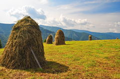 landscape with hay stack Stock Photos