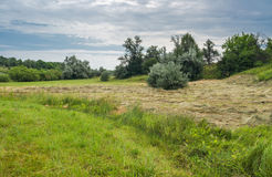 Landscape in haymaking time Stock Photography