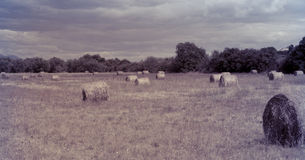 Landscape of the haystack on field. Vintage. View of the haystack on background of the forest and cloudy sky. Vintage Royalty Free Stock Photos