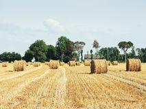 Landscape with haystack rolls on harvested field. In Normandy, France royalty free stock photo