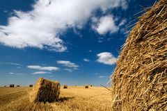 Landscape with haystacks Royalty Free Stock Photo
