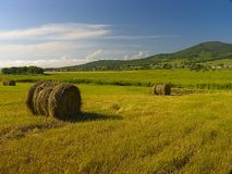 Landscape with haystacks Stock Photo
