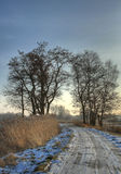 Landscape HDR photo in woods Royalty Free Stock Images