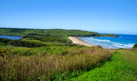 Landscape from the height, Farm beach, Killalea, Southern Coastal NSW Stock Image
