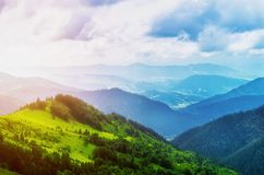 Landscape from height to mountain slopes, blue distance, meadow, tree. Carpathians Ukraine stock image