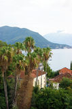 Landscape in Herceg Novi. Landscape in the seaside town of Herceg Novi (Montenegro Royalty Free Stock Photography