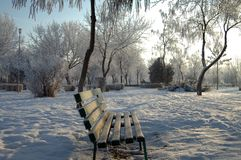 The landscape hibernal dreamlike 1. Landscape stories in the winter season in the city park Royalty Free Stock Photography
