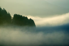 Landscape in high fog Stock Photo