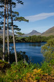 Landscape in Highlands (Scotland) Royalty Free Stock Photos