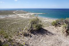 Landscape from the hill near Puerto Madryn, a city in Chubut Province, Patagonia, Argentina. Landscape from the hill on the beach after Punta Loma near Puerto royalty free stock images