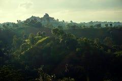 Landscape, Hill, Green, Morning Stock Photos