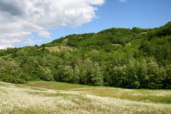 Landscape with hill Stock Photos