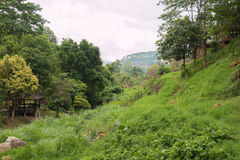 Landscape of hill. Royalty Free Stock Photography