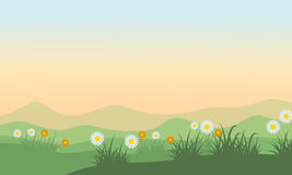 Landscape of hill at spring Royalty Free Stock Image