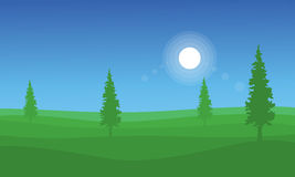 Landscape of hill with spruce Stock Photography