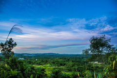 Landscape from the hill. The view from the hill Royalty Free Stock Image