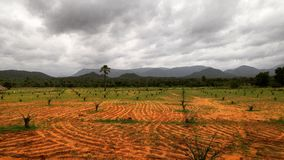 Landscape with the hills in background. Beautiful landscape& x27;s in the forests of maredumilli village near rampachodavaram Stock Photos
