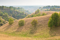 Landscape of hills covered with yellow grass at sunny autumn afternoon Stock Photography
