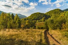 Landscape with hills forested. Autumn Royalty Free Stock Photo