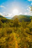 Landscape with hills forested. Autumn Royalty Free Stock Photos
