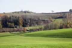 Landscape of hills Royalty Free Stock Image
