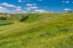 Landscape with hills overgrown with wild grasses in rural Ukrainian area Stock Images