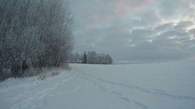 Landscape with hoarfrost on overcast day, time lapse 4K. Landscape with hoarfrost in rural area with snow covered fields and wooden houses far away on overcast stock footage