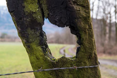 Landscape through a hole in a wood fence. A landscape through a hole in a wood fence Royalty Free Stock Photography