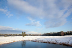 Landscape in holland with snow and frozen pond near zeist Stock Photography