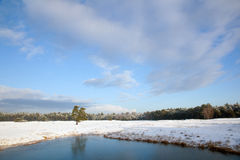 Landscape in holland with snow and frozen pond near zeist Stock Images