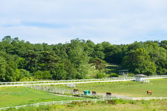 Landscape of horse ranch Stock Photography