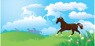 Landscape with horses Royalty Free Stock Photo