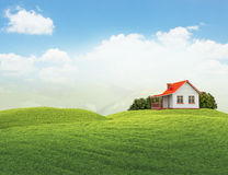 Landscape with house and bushes isolated on white. 3d illustration of landscape with lawn with house and bushes Stock Photos