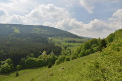 Landscape with house, forest and meadow. Stock Photography