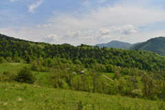Landscape with house, mountains, forest and meadow. Royalty Free Stock Photography