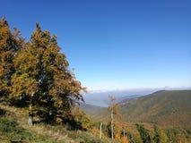 Landscape in Hungary. Fall landscape in Hungary Royalty Free Stock Photo