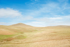 Landscape of Hustai National Park, Mongolia Stock Images