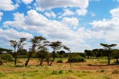 Landscape i Afrika Fotografering för Bildbyråer