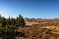 Landscape on Iceland Royalty Free Stock Photography